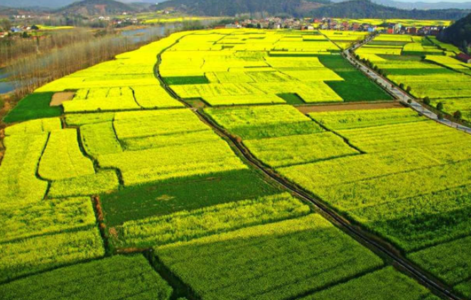 Sharing farmland: a new model for rural poverty-relief