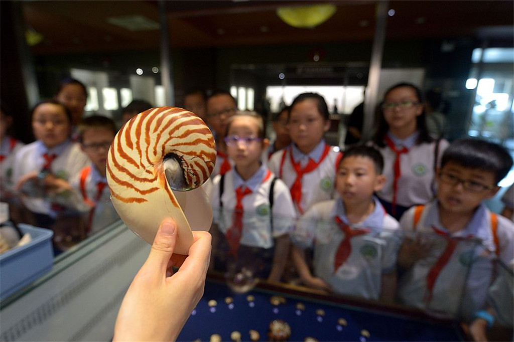 Qingdao students have summer classes in local shell museum