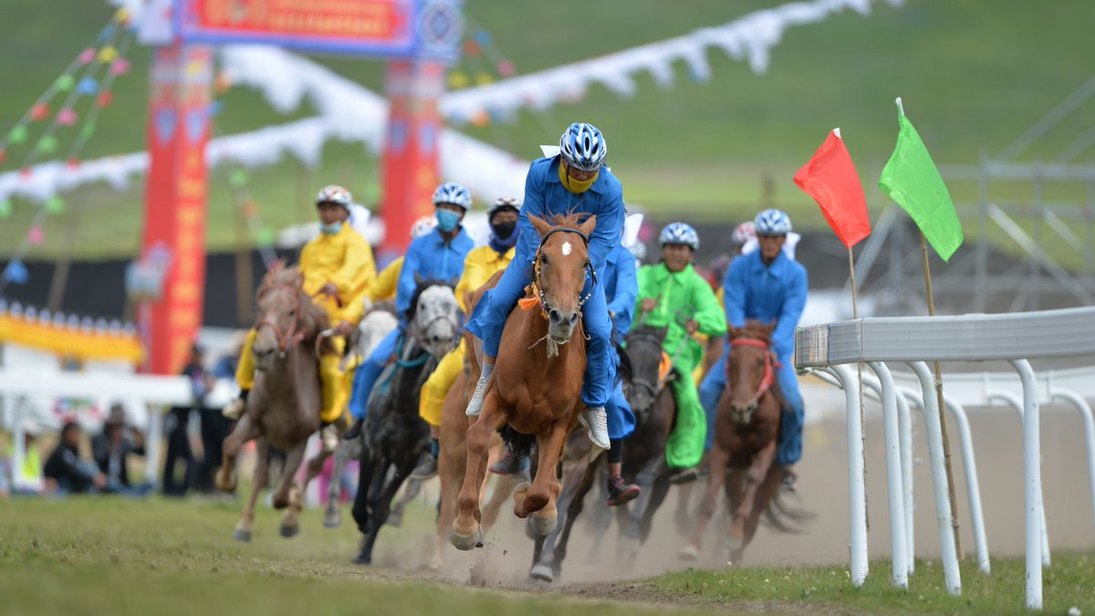 Herdsmen ride and race horses to celebrate cashmere harvest in SW China's Tibet