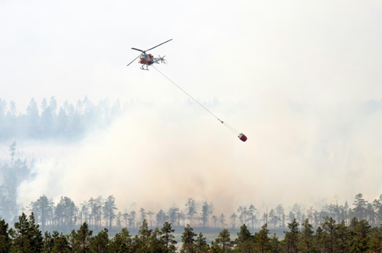 Climate becomes major Swedish election issue after wildfires
