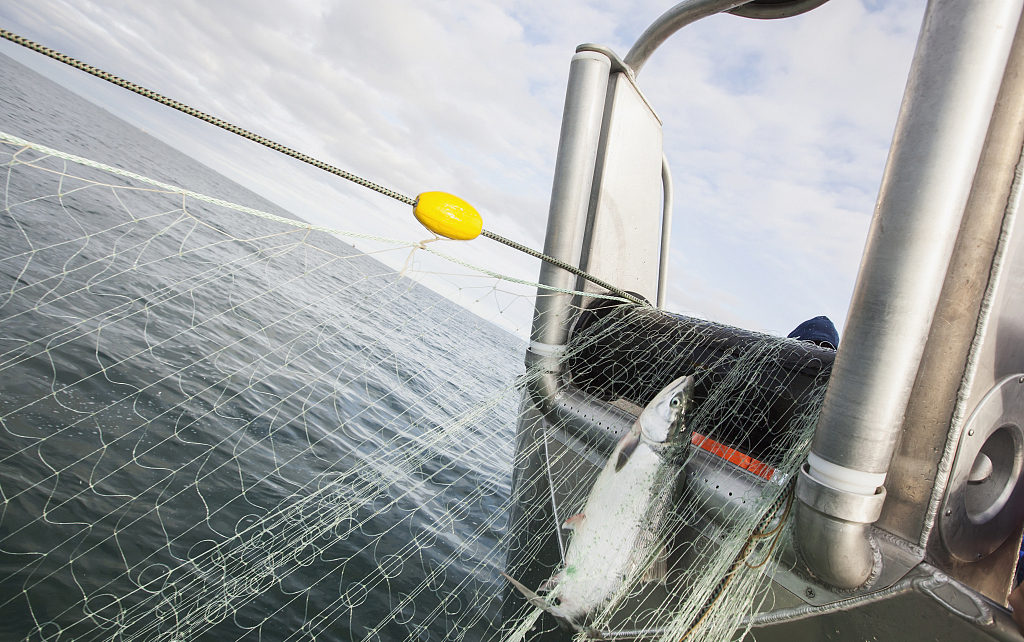 Alaska seafood industry to protest Trump's proposal for steep tariffs on seafood