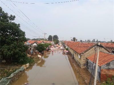 Relief, rehab continue in flood-hit Shouguang city