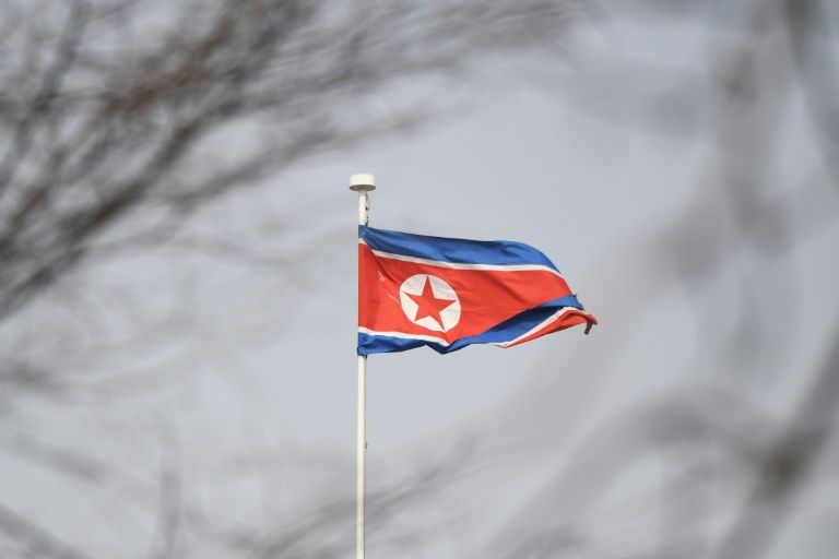North Korea to release Japanese detainee: KCNA