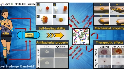 Chinese scientists develop new wound dressing material