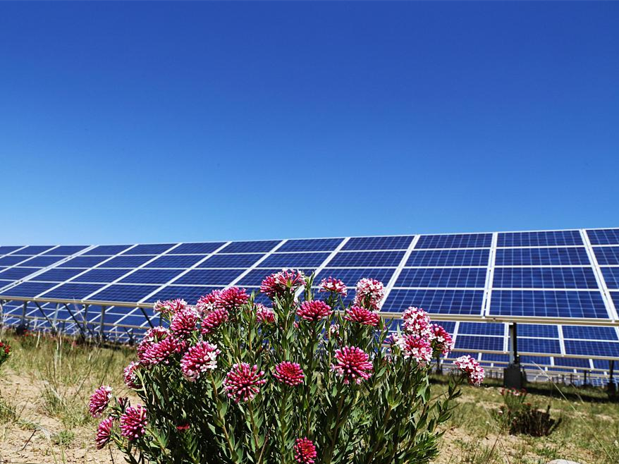 Scientists develop new way to harness solar power