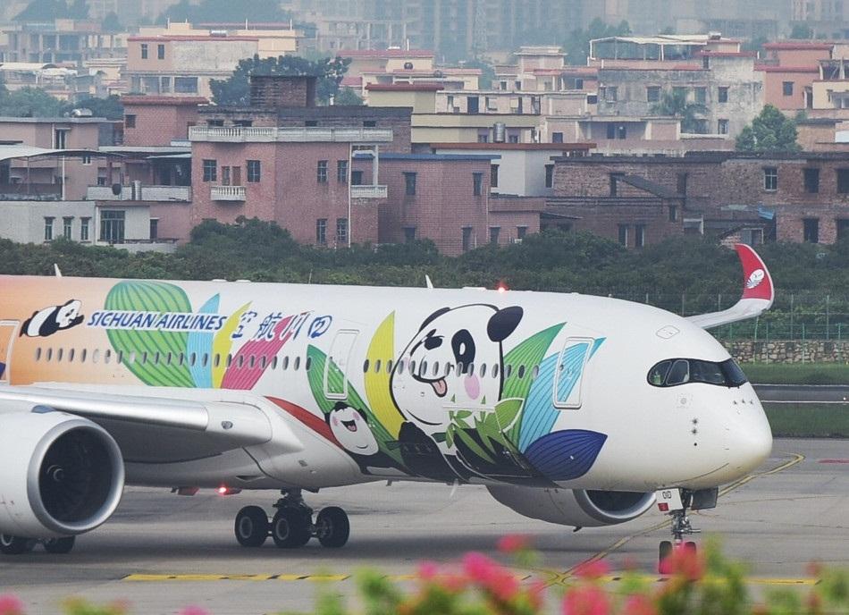 'Panda' aircraft makes first flight to Guangzhou