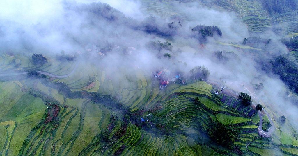 Terraced fields in Chongqing