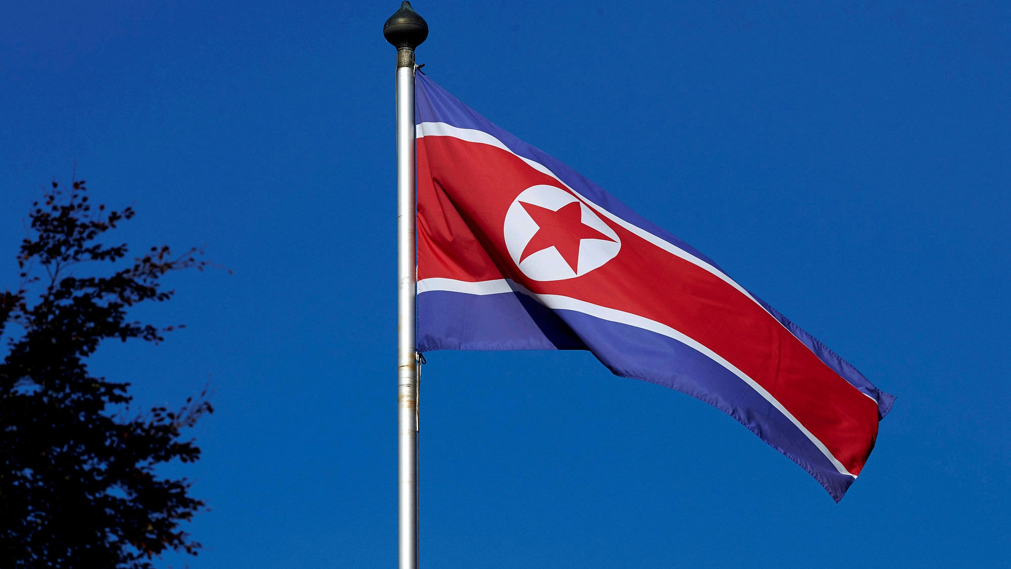 DPRK leader Kim Jong-un confirms his readiness to visit Russia: Russian media