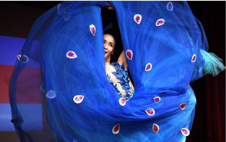 China arts festival kicks off in San Francisco to build cultural bridge