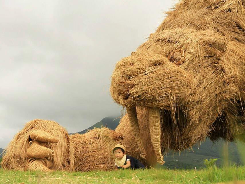 11st Wara Art Festival held in Japan