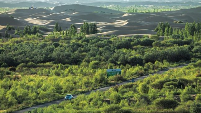 China builds 'green wall' to stop sand encroachment