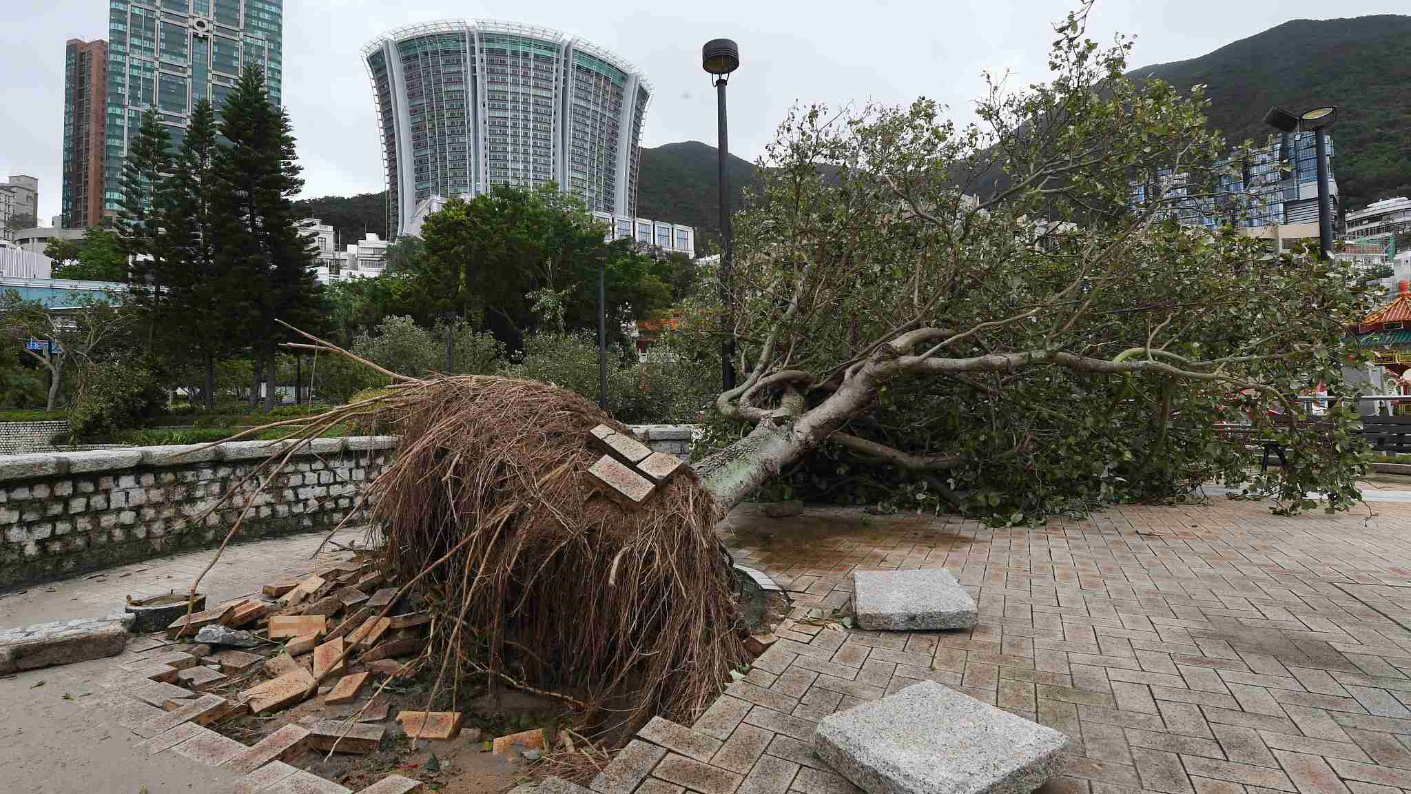 Hong Kong recovering after Typhoon Mangkhut