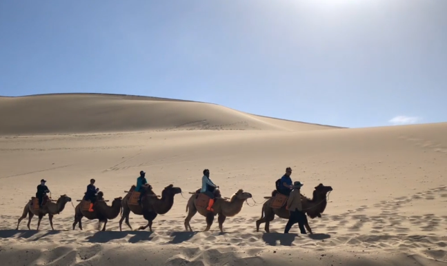 Video: Behold this stunning oasis at the edge of the Gobi Desert